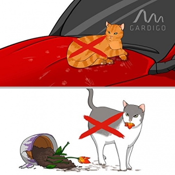 Katzen vertreiben mit Ultraschall